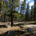 Typical campsite at Lakeview Campground.- Lakeview Campground