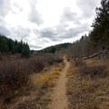 Smooth trail in open valley. - Rich Creek + Rough and Tumbling Creek Hiking Loop
