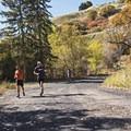 City Creek Canyon Road.- City Creek Canyon Road Cycling