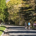 Close enough to downtown to enjoy a ride in on your lunch break or between classes at the university.- City Creek Canyon Road Cycling
