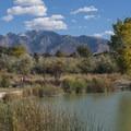 The Midas Pond.- Jordan River Parkway Road Cycling