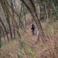 Riding the Mueller Park Trail.- Mueller Park Trail Mountain Bike Ride to Big Rock