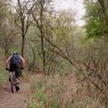 Descending through the trees.- Mueller Park Trail Mountain Bike Ride to Big Rock