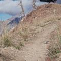 Riding the Big Mountain Trail, Snowbird.- Big Mountain Trail Mountain Bike Ride