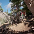 Flying through the pines.- Big Mountain Trail Mountain Bike Ride