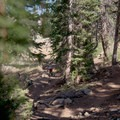 Whip over a tabletop jump.- Big Mountain Trail Mountain Bike Ride