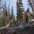 Some exposed granite.- Big Mountain Trail Mountain Bike Ride