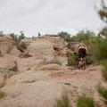 Traversing the slickrock.- Gooseberry Mesa Mountain Biking: South Rim, Hidden Canyon + White Trail