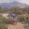 Sandy turn, looking west.- Gooseberry Mesa Mountain Biking: South Rim, Hidden Canyon + White Trail