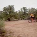 Cutting from Hidden Canyon onto White Trail.- Gooseberry Mesa Mountain Biking: South Rim, Hidden Canyon + White Trail