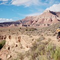 Looking north approaching the Virgin River.- Hurricane Cliffs Mountain Biking: JEM
