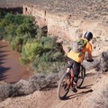Hugging the rim of the Virgin River.- Hurricane Cliffs Mountain Biking: JEM