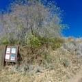 Beginning of the trail.- Big Mountain Summit Hike