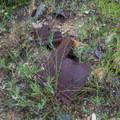 Piece of a broken stove or boiler near mining ruins.  - Kessler Peak Loop Hike via Carbonate Pass