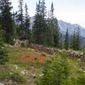 Ruins of a mining building at the top of Carbonate Pass.  - Kessler Peak Loop Hike via Carbonate Pass