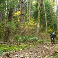 The south end of Menzies Trail starts with a steep climb.- Menzies Trail Mountain Bike Ride