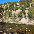 Fly fisher in the Arkansas River.- Arkansas River Trail Hike