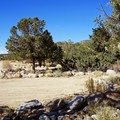 Day use picnic area off of the Arkansas River Trail. - Arkansas River Trail Hike