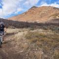 Riding the Donkey Ridge Trail in the Dutch Hollow Trail System.- Dutch Hollow Trail System Mountain Biking