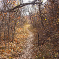 Some of the tighter sections of the Sage Trail.- Dutch Hollow Trail System Mountain Biking