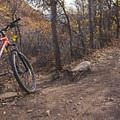 Fork in the road, Sage and Cottontail trails converge.- Dutch Hollow Trail System Mountain Biking