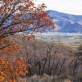Midway in autumn.- Dutch Hollow Trail System Mountain Biking