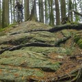Hoots takes advantage of some great natural terrain.- Woodlot Mountain Bike Trails: Blood Donor, Giant Killer + Hoots