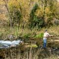 The fly fishing on Jones Creek is legendary.- Jones Hole Trail