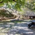 A tiny backcountry campsite along the trail.- Jones Hole Trail