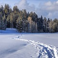 Great snowshoe opportunities nearby.- The McPolin Farm
