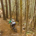 A few rolls and drops lower down.- Cypress Mountain Bike Trails: BLT, Upper Tall Cans + Wu Tang