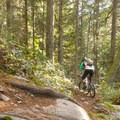 - Cypress Mountain Bike Trails: BLT, Upper Tall Cans + Wu Tang