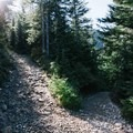 One of the many switchbacks along the Eagle Bluffs Trail.- Eagle Bluffs Hike, Cypress Mountain