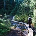 Boardwalks to help navigate through the marshy areas up top.- Eagle Bluffs Hike, Cypress Mountain