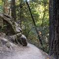Saratoga Gap Trail.- Saratoga Gap, Ridge Trail + Castle Rock Loop Hike