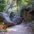 Rock formations along the Saratoga Gap Trail.- Saratoga Gap, Ridge Trail + Castle Rock Loop Hike