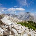 Krummholz vegetation on the exposed ridge.  - Pfeifferhorn Peak Climb