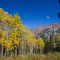 Aspens and view of Broads Fork Twin Peaks (11,330 ft and 11,328 ft).- Pfeifferhorn Peak Climb
