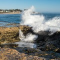 Waves crash against the rock bluff off of Geoffroy Drive.- Geoffroy Drive Wildlife Viewing