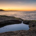A beautiful spot to catch a sunset over Monterey Bay.- Geoffroy Drive Wildlife Viewing