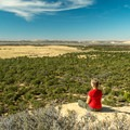 The first overlook on Harpers Corner Road is Plug Hat Butte.- Harpers Corner Trail