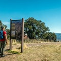 Trailhead for Harpers Corner.- Harpers Corner Trail