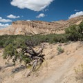 Fantastic trails are everywhere at 18 Road.- North Fruita Desert Campground, 18 Road Camping