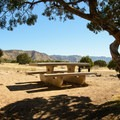 A few sites have a little shade as a bonus.- North Fruita Desert Campground, 18 Road Camping