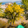 A beautiful place for tents and RVs alike.- Green River Campground
