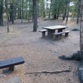 A typical RV site.- Kelsey Campground