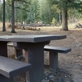 Plenty of space to roam here.- Kelsey Campground