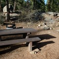 Typical campsite at Kelsey Campground.- Kelsey Campground