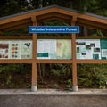 The ride starts at the parking lot for Whistler Interpretive Forest.- South Whistler Mountain Bike Trails: It's Business Time (Duncan's Trail)