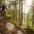 Rocks and roots.- South Whistler Mountain Bike Trails: It's Business Time (Duncan's Trail)